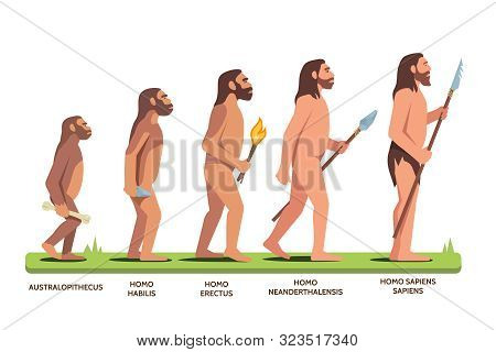 Human Evolution Stages And Man Progression Stages