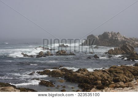 This Image Was Taken On A Day In The Fog Along The Coast Of Pacific Grove, California.