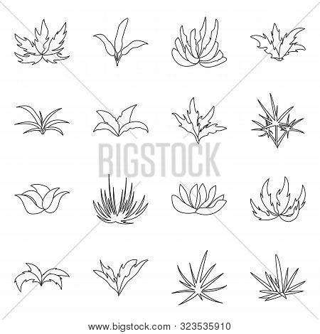 Vector Illustration Of Hedge And Shrub Sign. Collection Of Hedge And Floral Stock Symbol For Web.
