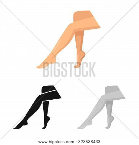 Isolated Object Of Leg And Lady Logo. Set Of Leg And Pinup Stock Symbol For Web.