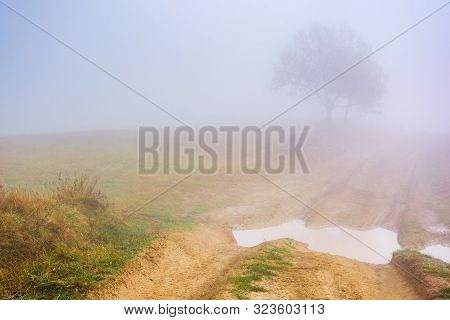 Dirt Road Through The Meadow At Foggy Sunrise. Beautiful Autumn Scenery In The Morning. Wonderful Na