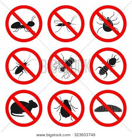 Pest Control Signs. Repellent And Insecticide Symbols. Vector.