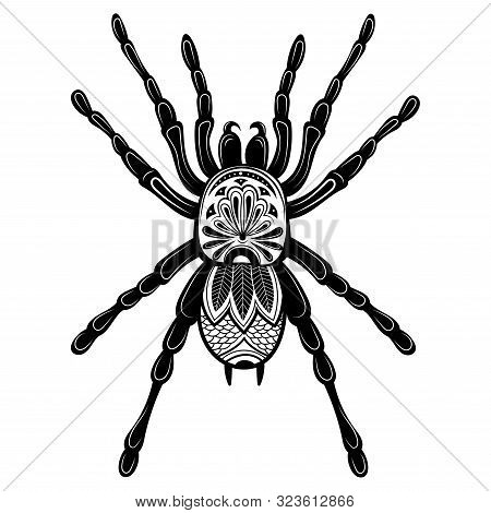 Spider With Patterns. Zentangle Spider. Black-white Illustration Of An Insect With Ornaments. Styliz