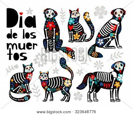 Mexican Dead Animals. Cats Skulls, Dogs Sugar Heads Colorful Holiday Vector Illustration For Day Of