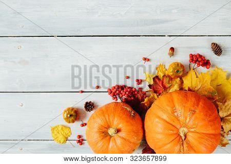 Thanksgiving Background: Pumpkins And Fallen Leaves On Wooden Background. Thanksgiving And Halloween