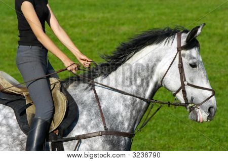 Girl jockey riding a white-gray horse with green grass in background poster