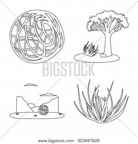 Isolated Object Of Wilderness And Texas Symbol. Set Of Wilderness And Pasture Vector Icon For Stock.