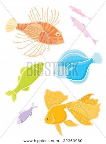 Vector collections aquarium fishes