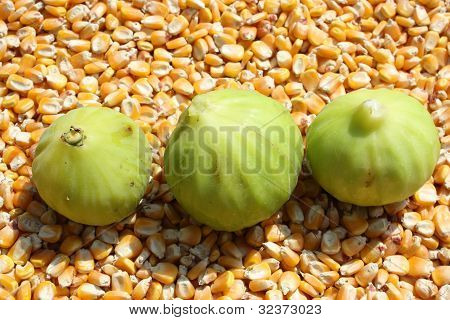 Three Figs on the maize