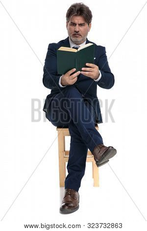 gorgeous formal business man with navy suit is sitting with legs crossed and reading a book intrigued on white studio background