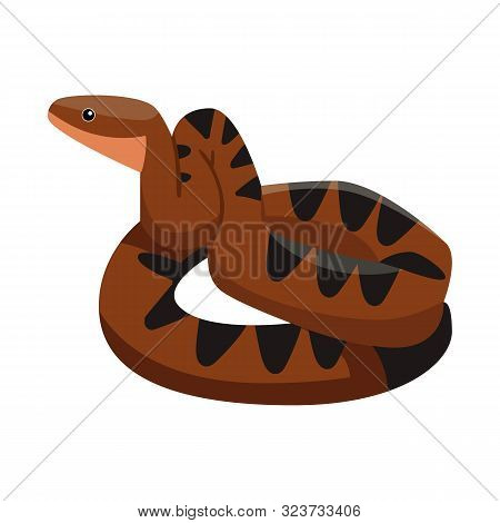 Vector Design Of Python And Serpent Logo. Graphic Of Python And Crawling Stock Vector Illustration.