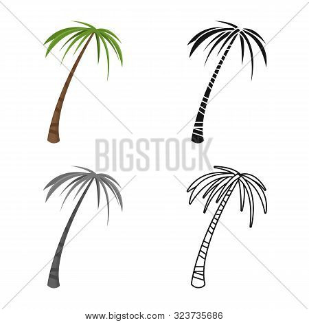 Vector Illustration Of Palm And Tall Symbol. Set Of Palm And Coco Stock Symbol For Web.