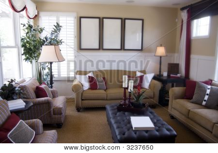Beautiful Elegant Living Room