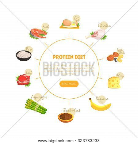 Protein Diet Chart Diagram, Nutrition And Wholesome Products For Cooking And Eating Vector Illustrat