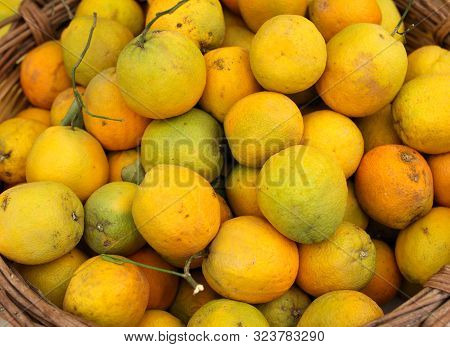 Fresh Oranges On The Counter In The Market.