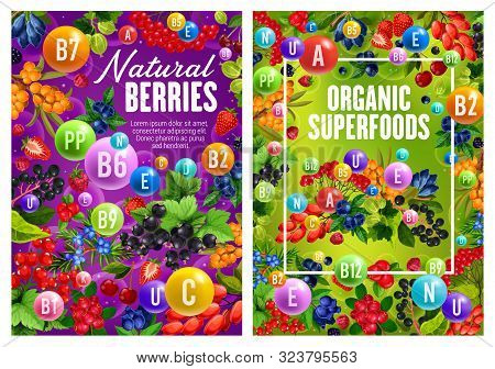 Natural Garden And Forest Berries, Organic Superfood. Vector Multivitamin Complex Of C, D, B, Vitami