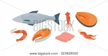 Natural Seafood Vector Illustrations Set. Whole Fish, Squid And Shrimp. Delicious Fish Market Produc