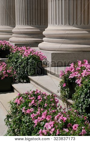 Ornate Stone Columns And Pink Flowers On Steps