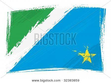 Grunge Mato Grosso do Sul flag