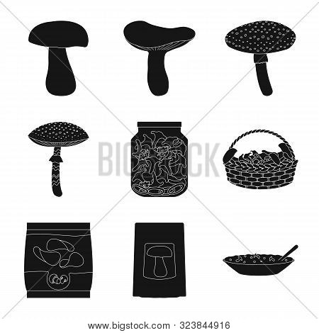Vector Illustration Of Variety And Ingredient Symbol. Collection Of Variety And Food Vector Icon For