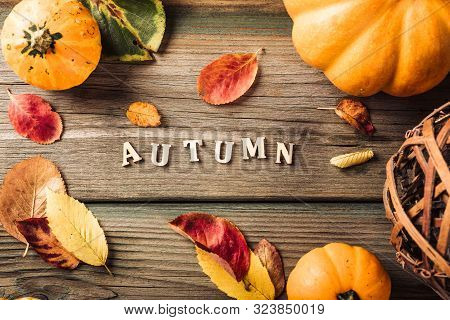 Autumn Pumpkin Thanksgiving Background With Text And Letters, Assorted Pumpkins Over Green Wooden Ta