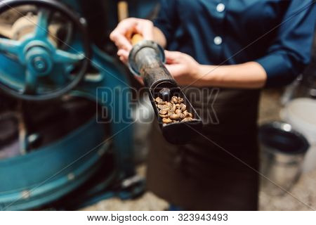 Woman taking sample of fresh beans from coffee roast machine, only hands to be seen