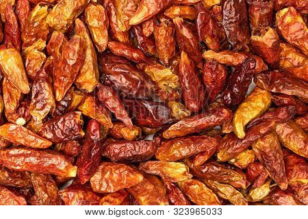 Lot Of Whole Dry Red Chili Pepper Peperoncino Macro Flatlay Isolated