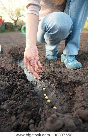 A Woman Working In Garden