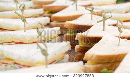 Food Catering Cuisine Culinary Gourmet Buffet. Delicious Seasonal Catering, Meal. Business Lunch, Sn