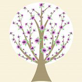 Beautiful cherry blossom tree isloated on white background poster