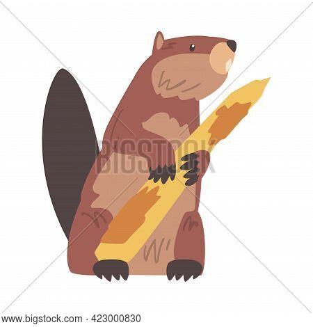Cute Beaver Gnawing Tree Branch, Brown Rodent Wild Mammal Animal Cartoon Vector Illustration