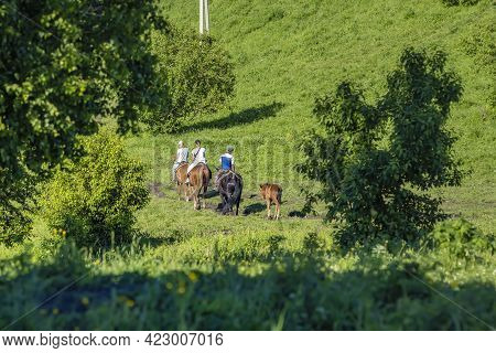 View Of The Back. Tourists, People, On Horseback Go Down The Mountainside With A Small Foal In A Cle