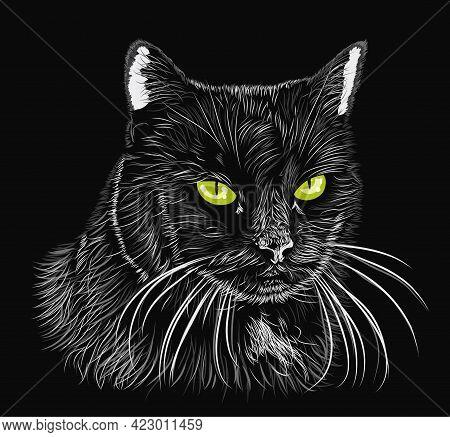 Black Fluffy Cat With Green Eyes. Vector Illustration
