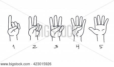 Counting From One To Five On The Fingers. Hand Gestures For Preschool Learning To Count. Numbers On