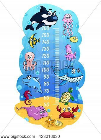 Kids Height Chart, Cartoon Sea Animals Growth Measure Meter With Cute Vector Whale, Fishes And Octop