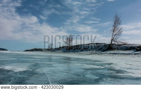 Several Trees Grow On The Shore Of The Frozen Lake. Bare Trunks And Branches Against A Blue Sky With