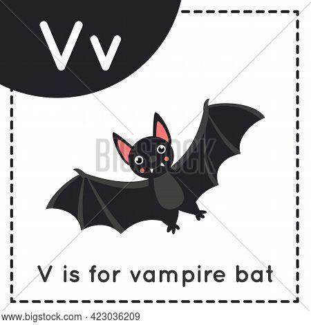 Animal Alphabet Flashcard For Children. Learning Letter V. V Is Vampire Bat.