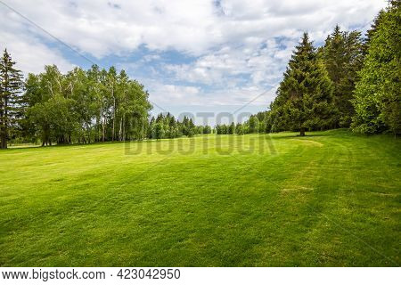 Beautiful Green Meadow Among Woods Under Blue Sky - Czech Republic, Europe