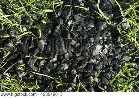 Black Coals Of A Burnt Fire On Green Grass, Revival Concept.