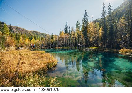 Colorful Autumn Landscape With Unusual Turquoise Lake Among Bright Yellow Trees In Sunshine In Gold
