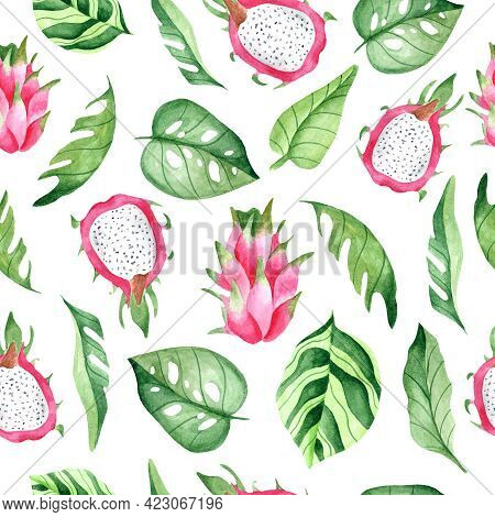 Watercolor Seamless Pattern With Pink Pitahaya. Design For Dresses With Pink Fruit. Seamless Illustr