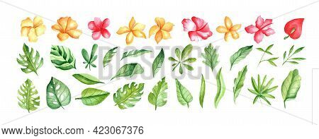 Watercolor Set With Tropical Elements. Leaves, Red, Yellow Hibiscus For Printing On Fabrics, Dishes,