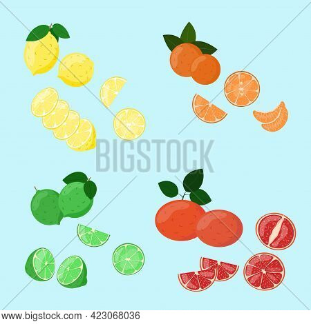 Citrus Fruits Set. Lemon, Tangerine, Lime And Grapefruit Slices In Cut Isolated. Vector Illustration