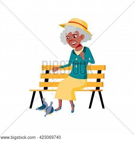 Elderly Woman Feeding Doves In Park Cartoon Vector. Elderly Woman Feeding Doves In Park Character. I