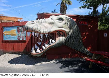 June 6 2021 - CABAZON, CALIFORNIA USA: A t-rex statue with open mouth and teeth at the Cabazon Dinosaurs museum, a roadside attraction along Interstate 10 in California. Editorial use only.