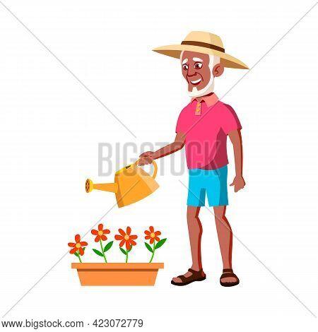 Old Man Gardener Watering Flowers In Garden Cartoon Vector. Old Man Gardener Watering Flowers In Gar