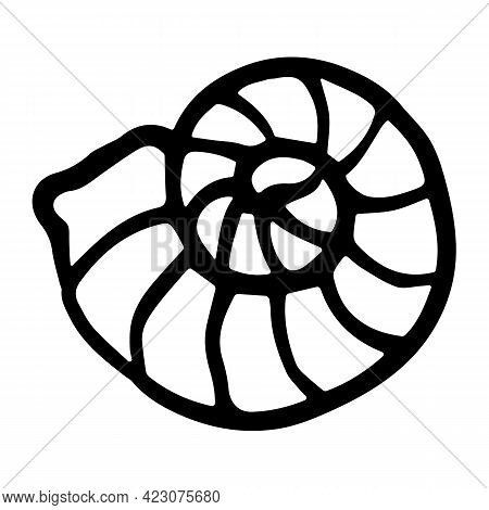 Vector Snail Shell In Doodle Style. Hand-drawn Striped Seashell Isolated On White Background. Mollus