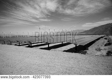solar panels in a photovoltaic power station. Solar power panels. Solar power plants. Solar panels in California. Black and White.