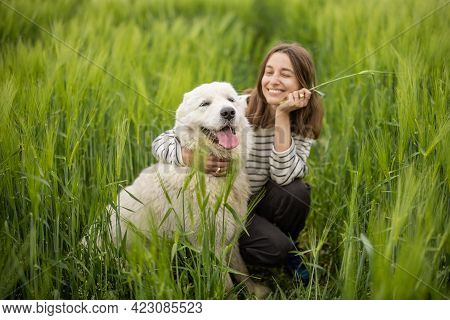 A Portrait Of Happy Woman Staying In Green Rye Field Enjoys Calm Nature While Cute Big Sheepdog Pull