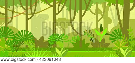 Jungle Landscape With Trees And Plants Vector Illustration. Tropical Forest Background. Jungle And N